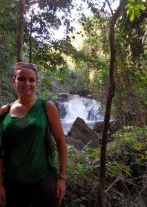 Chiang Mai Jungle 2